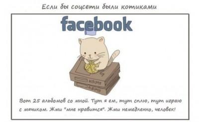 Если бы соцсети были котиками…